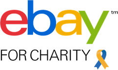 eBay GivingWorks